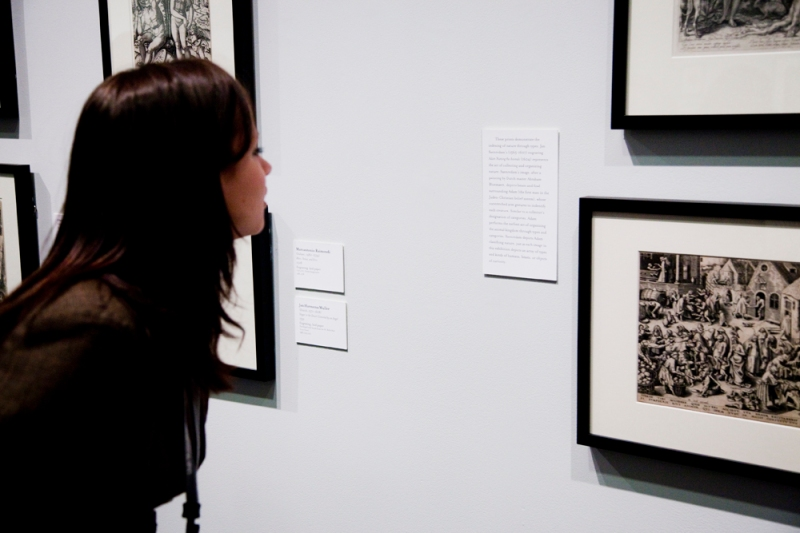 teen looking at exhibition