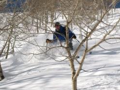 David Carroll skiing in Big Cottonwood Canyon