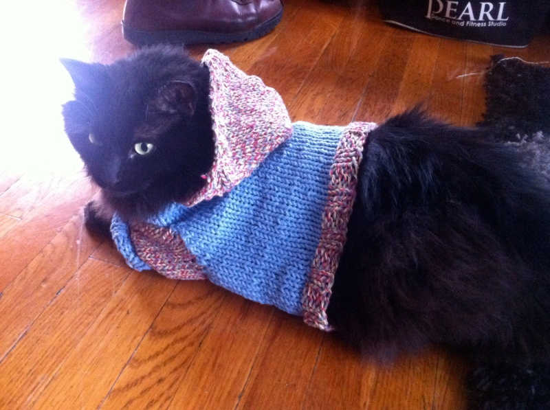 Martin modeling a handmade (by Ali) sweater