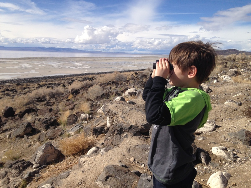 There's so much to explore about Robert Smithson's Spiral Jetty!